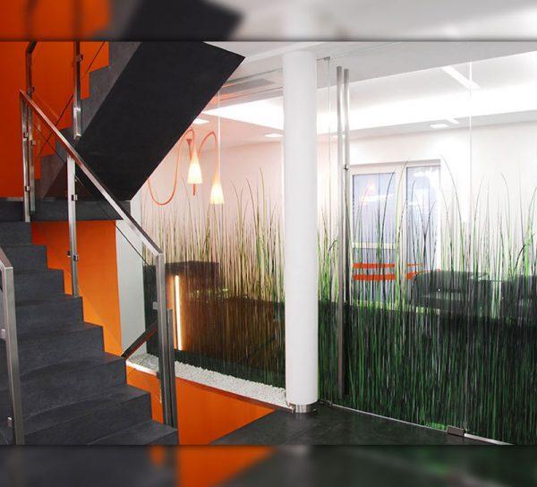 bedrucktes-glas-bild-druck-farbe-foto-natur-gras